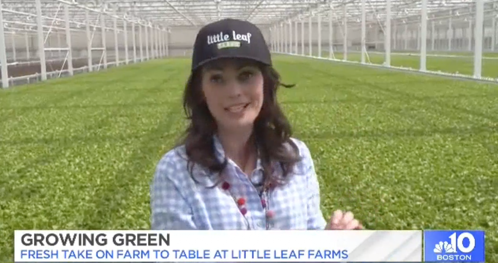 Little Leaf Farms NBC10